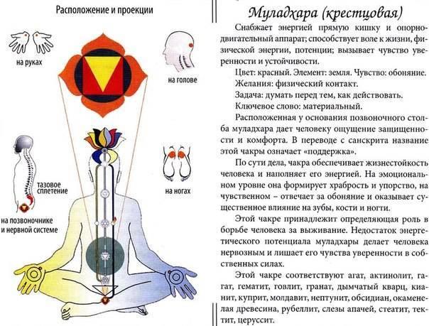 6 способов открыть и излечить горловую чакру (вишудху чакра) » университет mindvalley