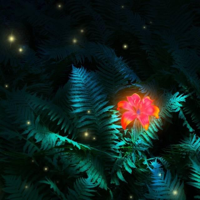 Оберег цветок папоротника: значение символа перунов цвет. тату папоротник.