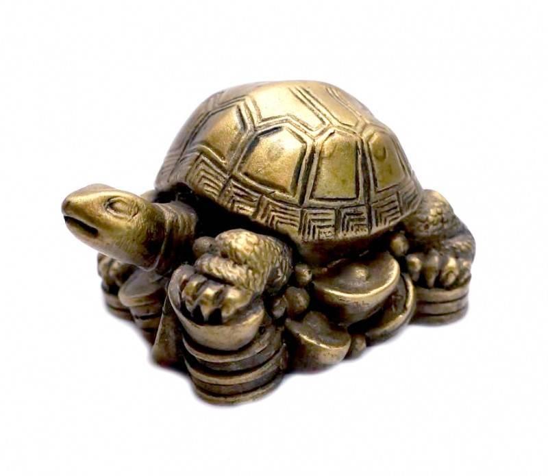 Талисман фен-шуй – черепаха: значение и материал амулета. активация талисмана «черепаха по фен-шуй» — фен шуй