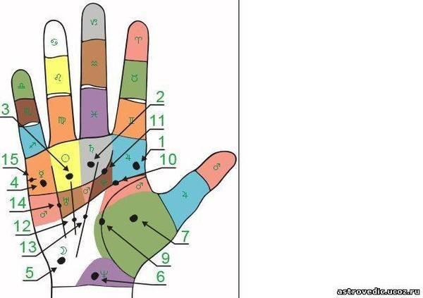 Родинка на ладони левой (правой) руки у женщин и мужчин - значение