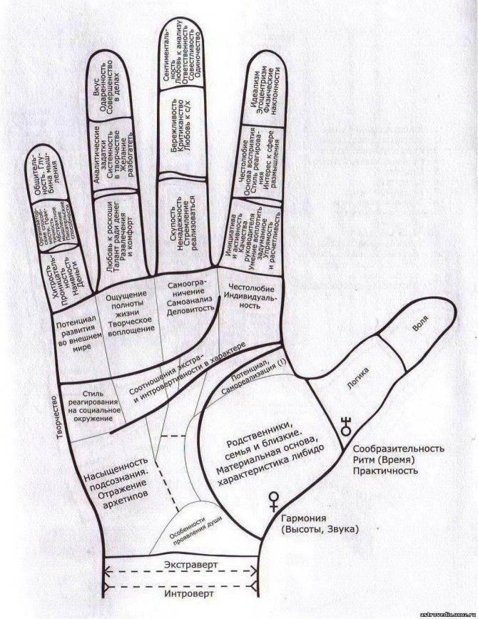 Как прочитать судьбу по линиям на руке: расшифровка знаков