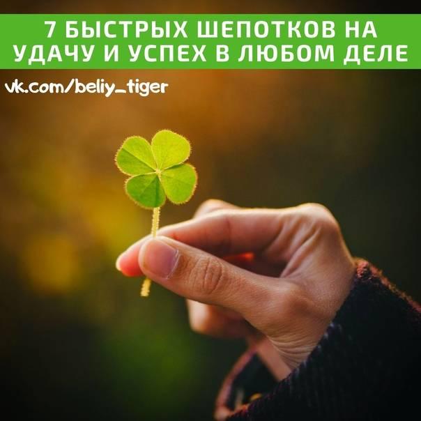 Молитва на удачу и успех во всем: в делах, в бизнесе, в работе, на деньги, на торговлю, на благополучие, николаю чудотворцу, матроне.