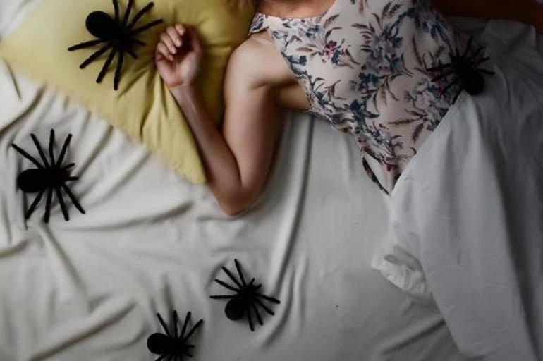 К чему снится укусил паук, толкование сна по соннику