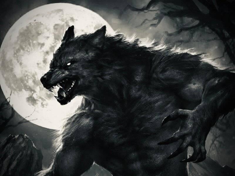 Оборотни: от фольклора «ведьмака» и warcraft до скрытых смыслов silent hill и resident evil