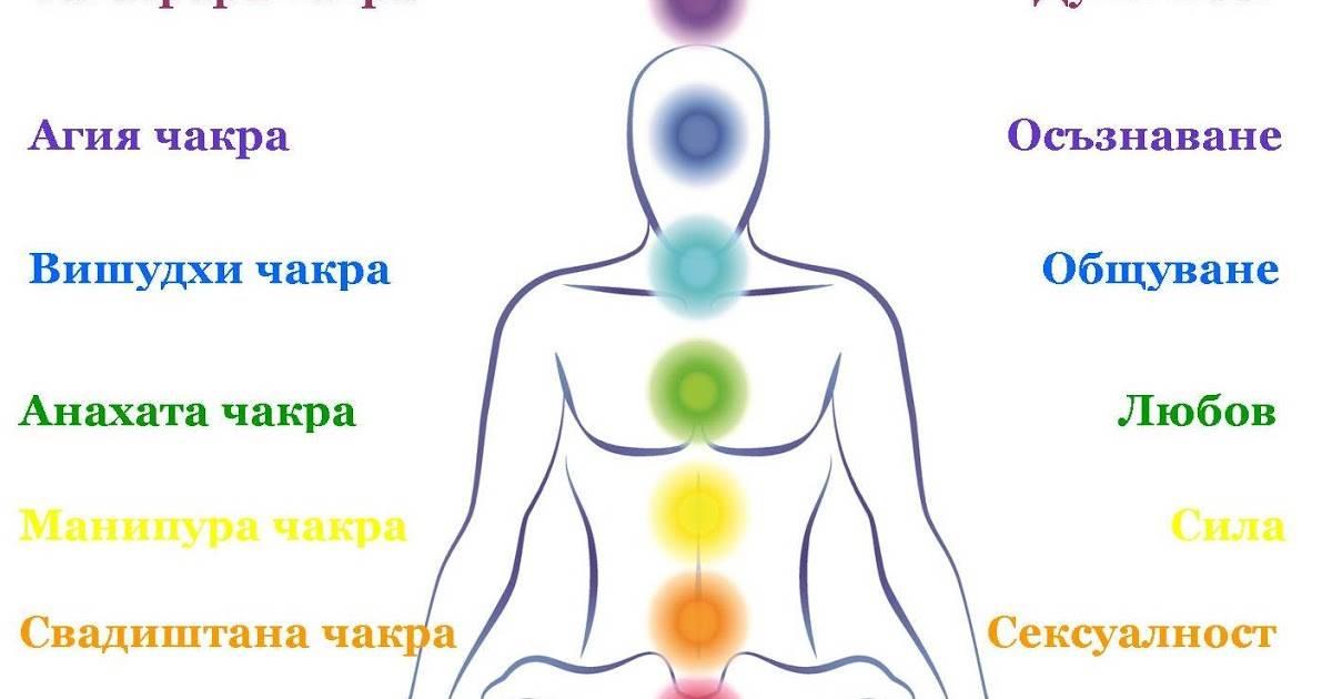 Сахасрара чакра отвечает за открытый обмен энегией