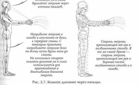 ✅ даосские практики и упражнения для мужчин: секреты любви - докторма.рф
