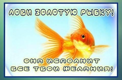 Гадание золотая рыбка на желание: сбудется ли задуманное