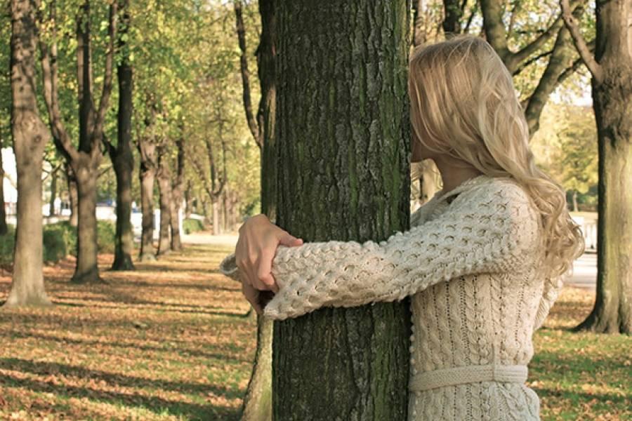 Какое дерево нужно обнять, чтобы получить здоровье, успокоиться и восстановить силы