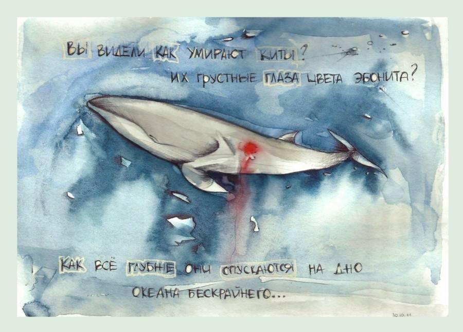 К чему снится кит женщине или мужчине - толкование сна по сонникам