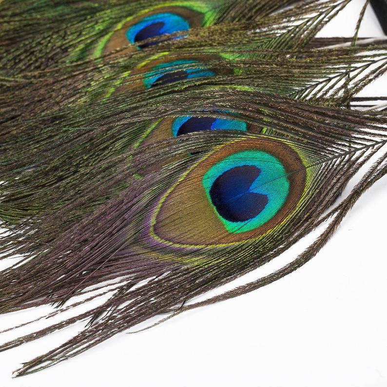Можно ли держать в доме павлиньи. можно ли дома держать павлиньи перья? почему можно держать, хранить дома перья павлина: положительное толкование примет