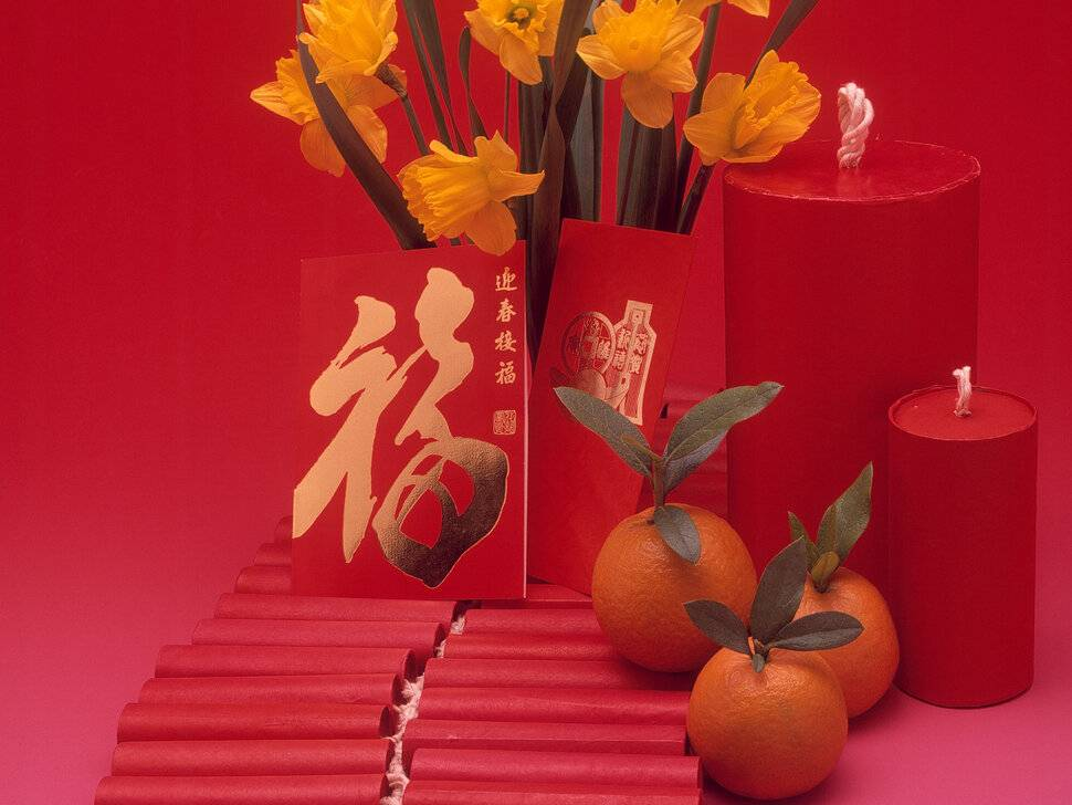 Домашний фен шуй и какие комнатные цветы приносят в дом счастье и благополучие