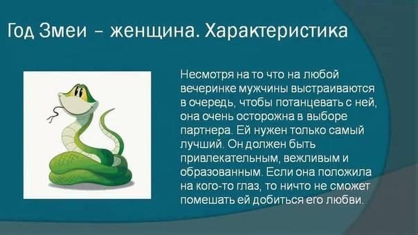 Мужчина змея и женщина змея: совместимость в любви и браке, а также сочетаемость с другими годами
