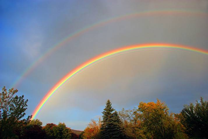 Увидеть радугу: к чему примета