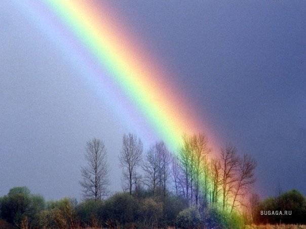 Увидеть радугу: примета