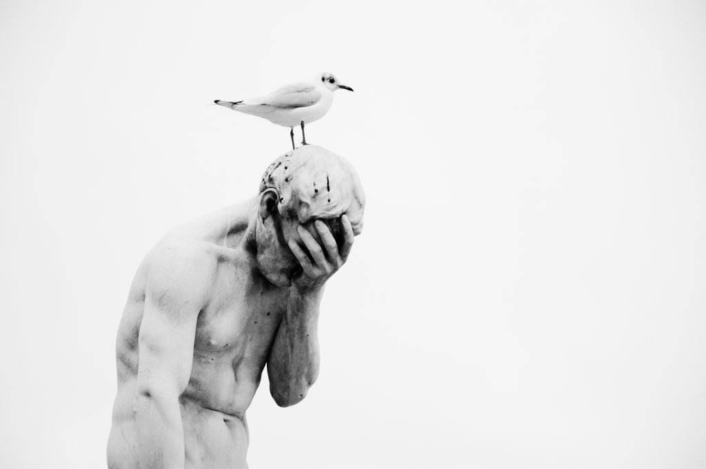 Приметы, если птица нагадила на человека