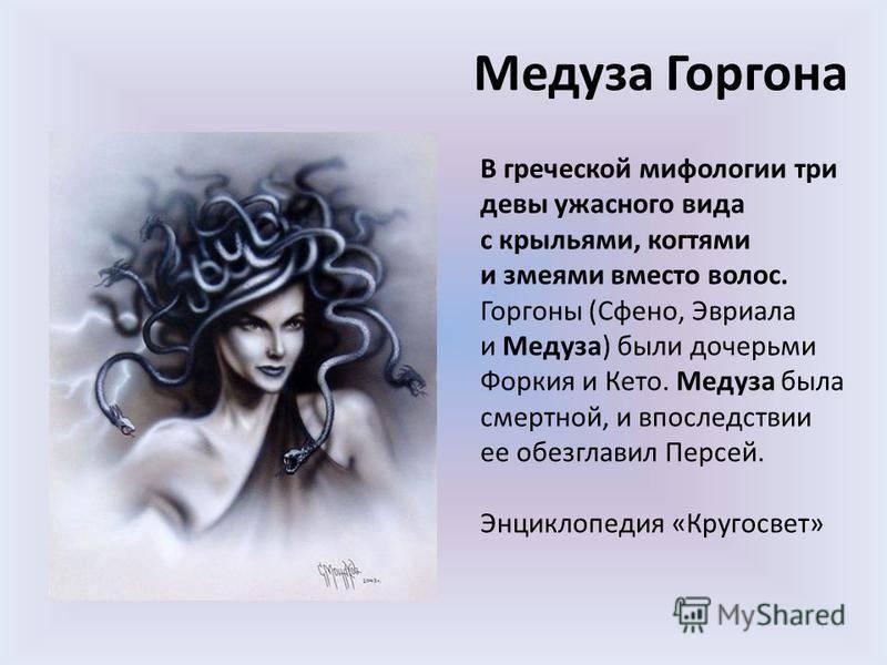 Медуза - medusa - xcv.wiki