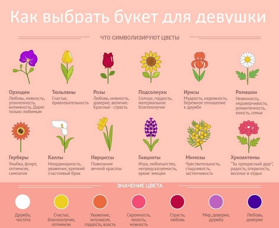 Магические свойства розы: значение цвета и количества роз в букете