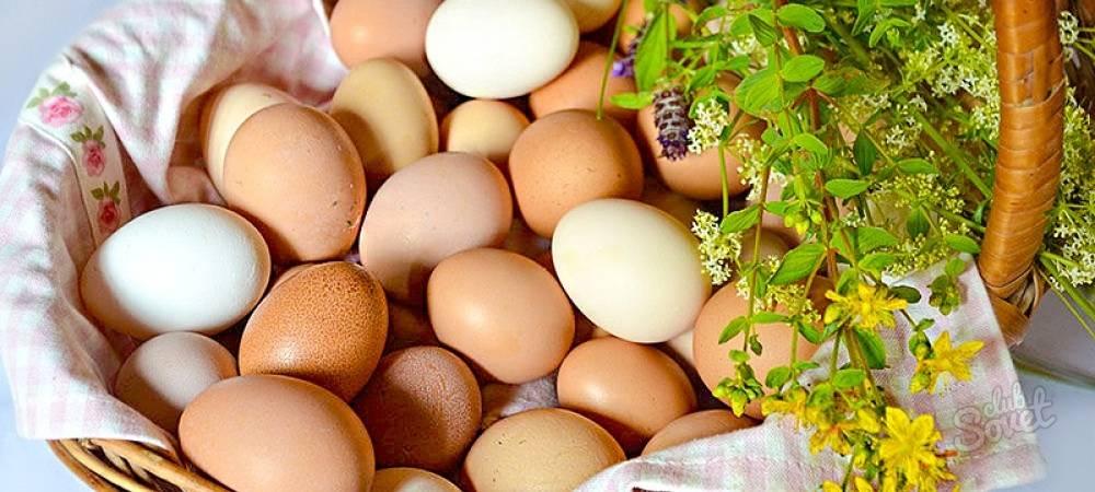 Сонник яйца к чему снится во сне? видеть яйцо что означает?