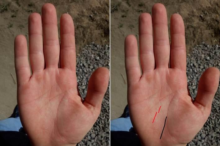 Линия головы (ума) на руке - расшифровка с фото в хиромантии