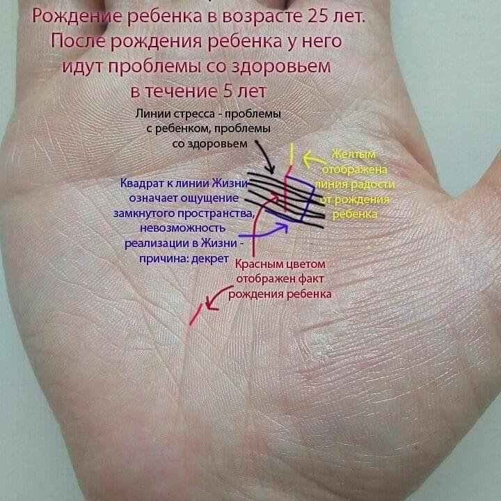Значение линии жизни на руке: характеристика человека, знаки