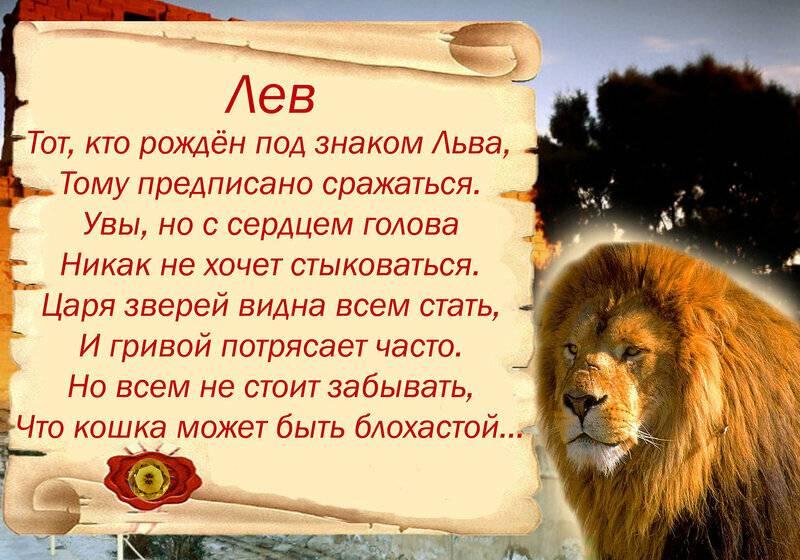 Женщина лев: характеристика знака зодиака, подходящие подарки и талисманы