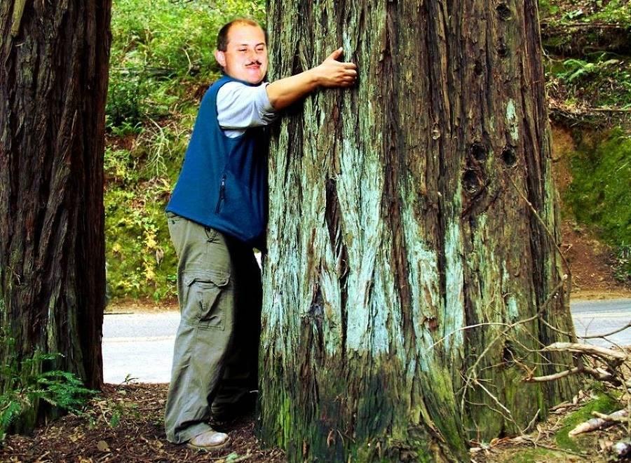Лесные деревья-доноры и вампиры: польза прогулок в лесу, как обнять дерево для энергии