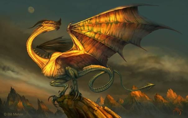 10 основных видов драконов