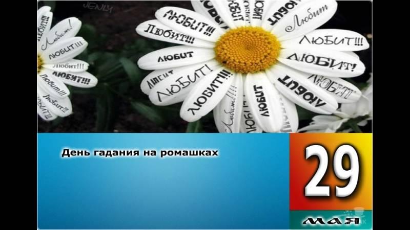 29 мая - день гадания на ромашках: открытки, картинки о ромашках, гаданию на ромашке - интересные цветочные гадания