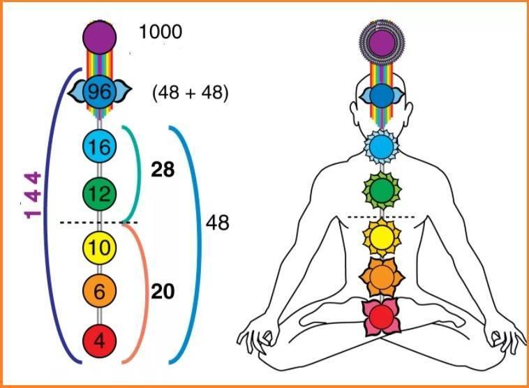 Что такое семь центров любви