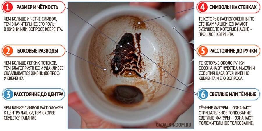 Гадание на кофейной гуще: толкование и значение символов сердце, лошадь, собака, рыба, медведь, тигр и другие