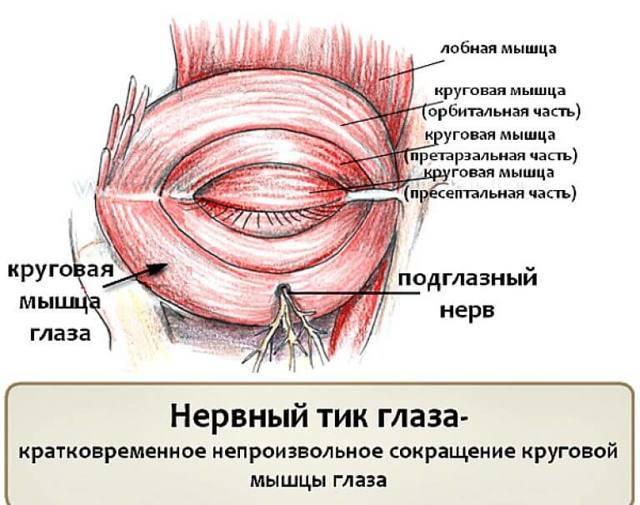 Подергивание глаз. блефароспазм!