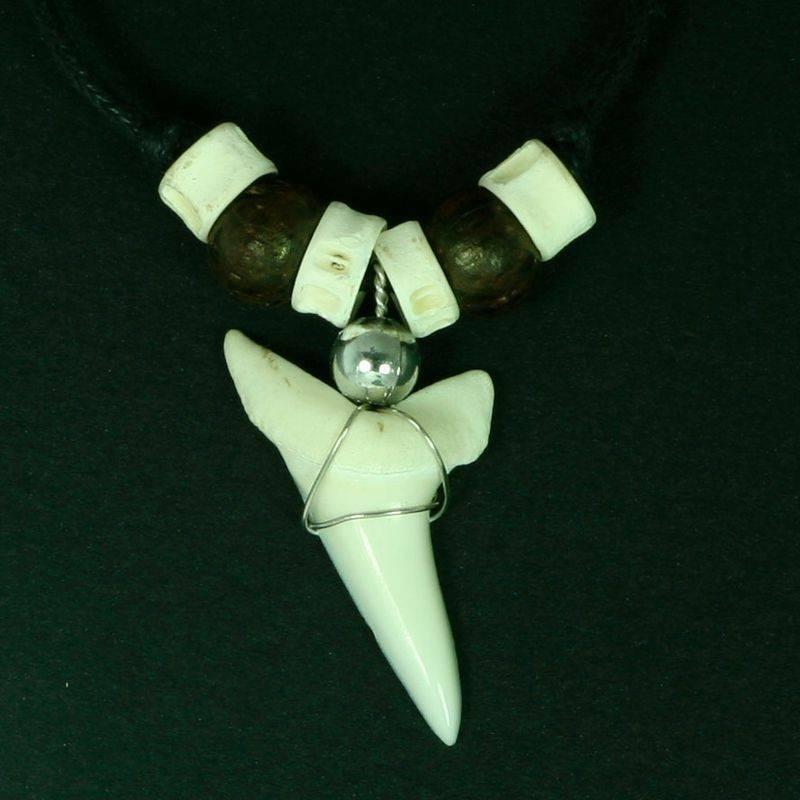 Амулет акулий зуб значение. сила амулета из зуба акулы или крокодила. в каких целях применяется зуб акулы