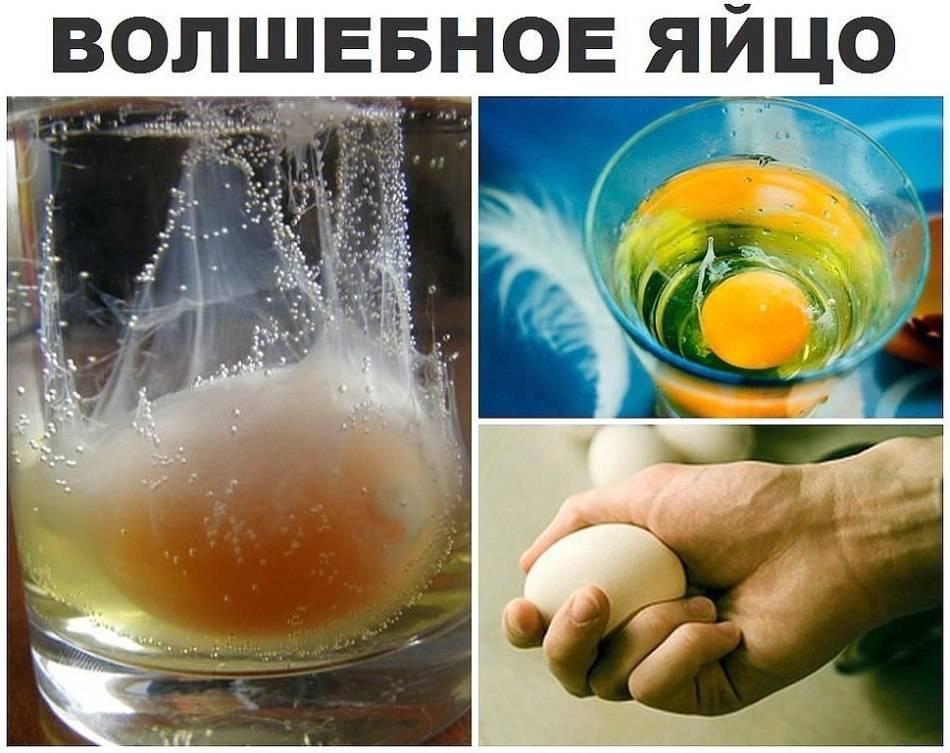 Снятие порчи яйцом в домашних условиях, правильный порядок и расшифровка чистки
