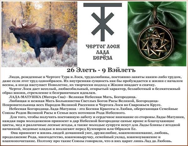 Значение и описание чертог лося в древнеславянском гороскопе