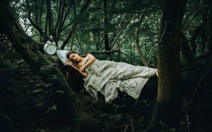 К чему снится лес? толкование снов :: syl.ru