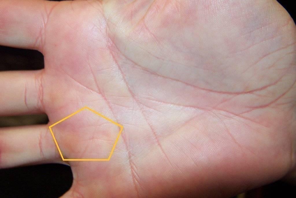 Редкие знаки на руке. хиромантия интересной символики с расшифровкой