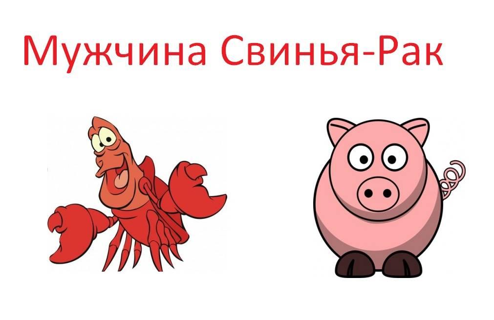 Мужчина-свинья (кабан) - женщина-свинья (кабан)
