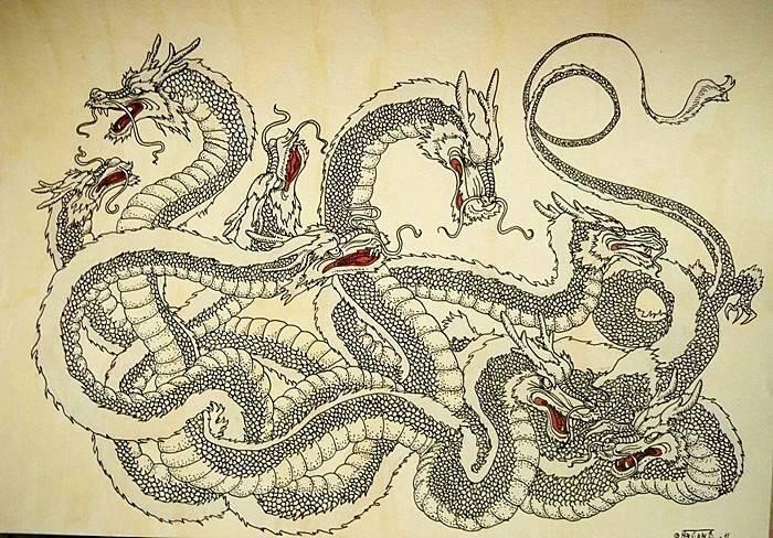 Драконы японии - классификация - драконы - каталог статей