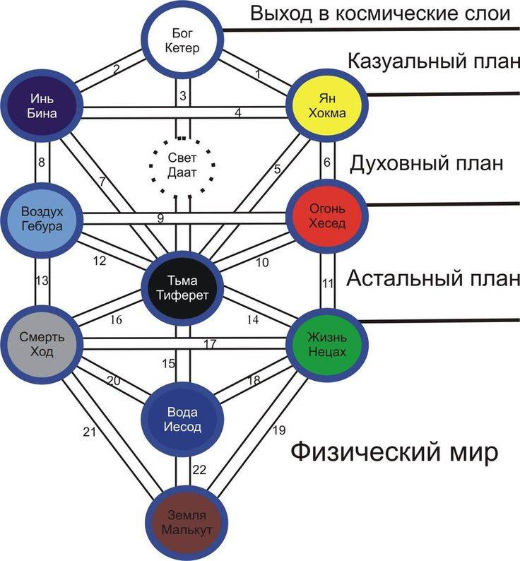 Древо жизни или древо сефирот || эн тео - университет духовного развития. таро, астрология, целительство.