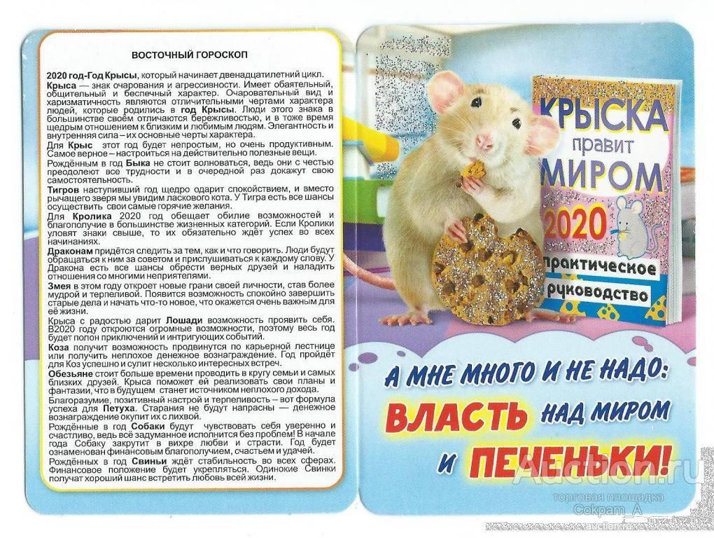 Год крысы в китайском гороскопе-какие года,характеристика,совместимость