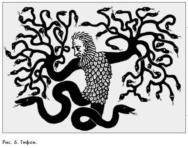 Ехидна - мифология, как выглядит греческая и библейская ехидна