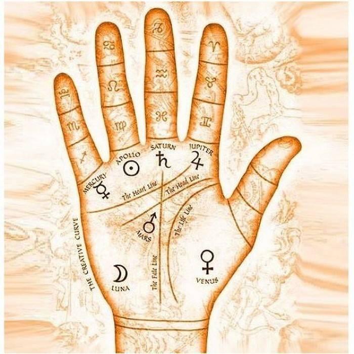 Линии на руке: что они означают? как узнать свое будущее по руке? что означают линии на ладоне руки