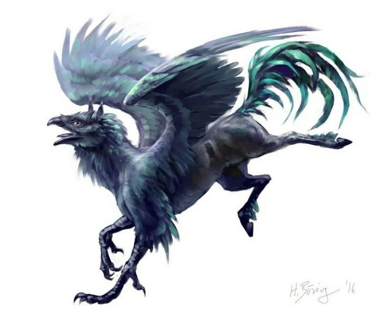 Грифон: описание, виды, происхождение, мифы | мифолог