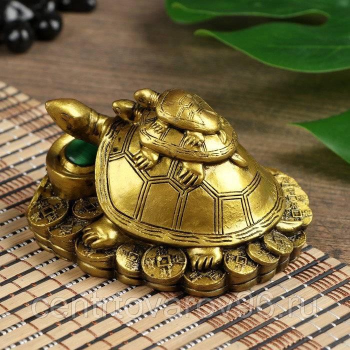 Символ черепаха: тайны значения и секреты правильно расположения