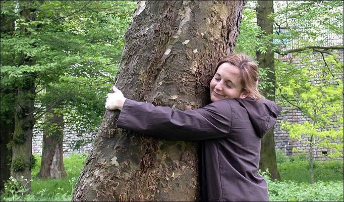 Деревья-доноры и деревья-вампиры