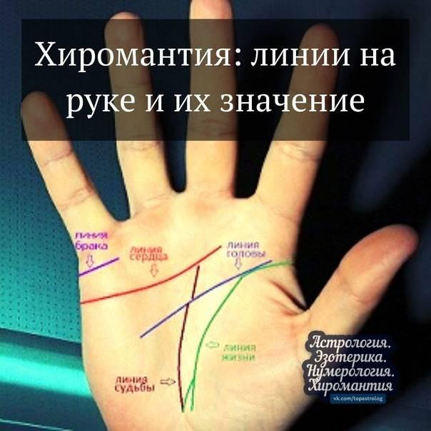 Линия судьбы на руке — расшифровка с фото
