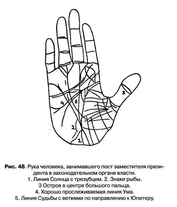 Основы хиромантии: значение линий на руке с пояснениями