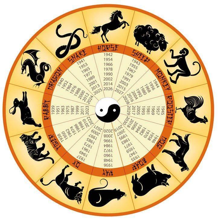 Час обезьяны по фэн шуй и других животных: о чём он расскажет