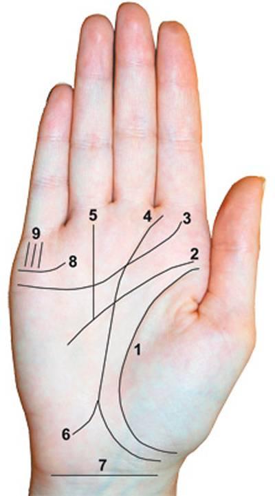 Линии удачи на руке — солнечный знак и успех, нюансы расшифровки