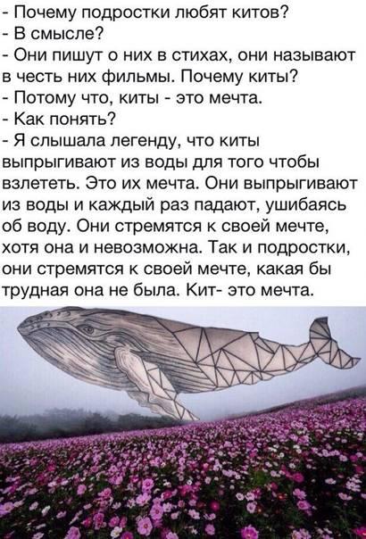 К чему снится кит: в воде, в море, кит во сне женщине.